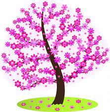 strom Měsíční vzdělávací nabídka
